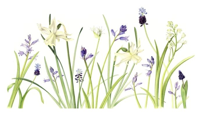 spring-medley